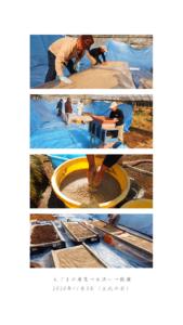えごまの唐箕→水洗い→乾燥